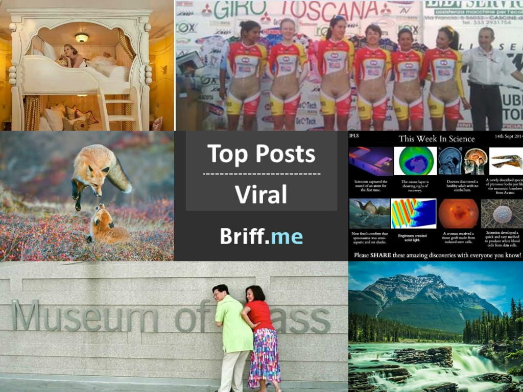 Viral Briff 15Sep2014