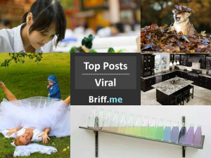 Viral Briff 20Sep2014