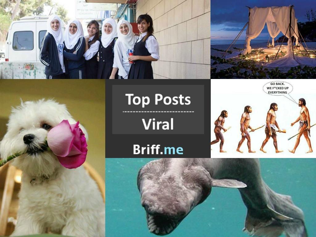 Viral Briff 01Oct2014