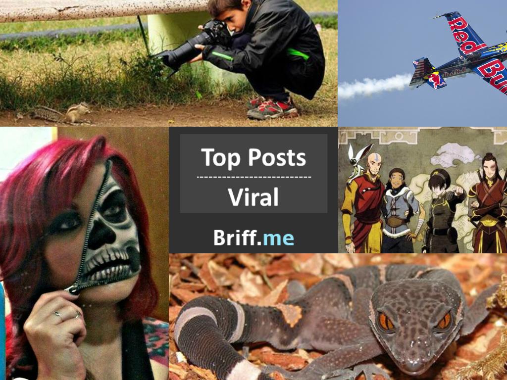 Viral Briff 29Oct2014