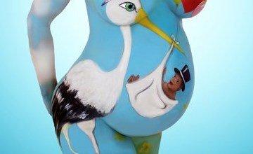 Pregnancy Pregnant Makeup Art Stork