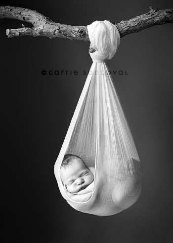 Newborn Photo Ideas - baby in a bag
