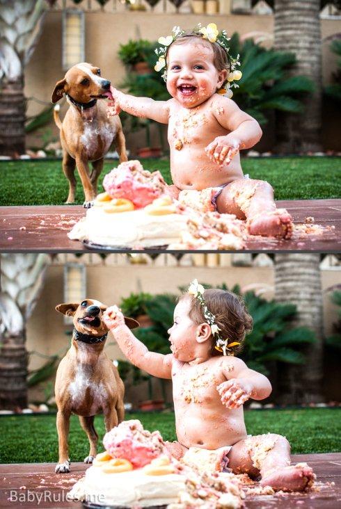 Parenting Photos 13 - Birthday Cake and Dog