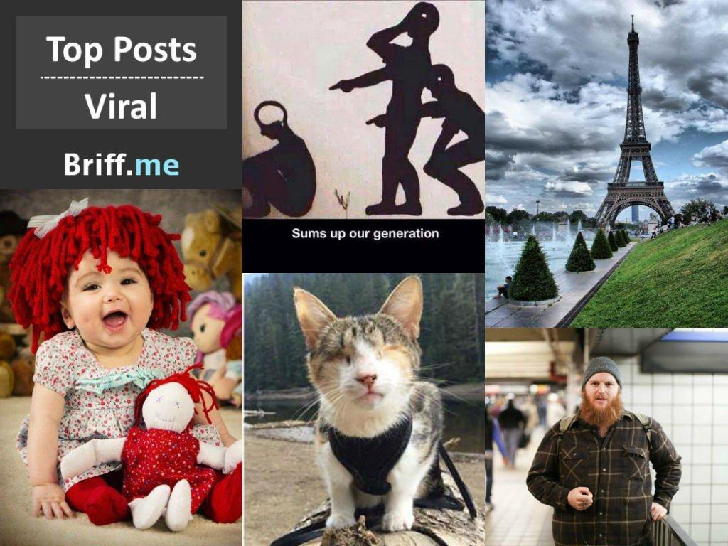 Viral Briff 11Nov2014
