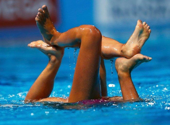 synchronized swimming funny photos 22