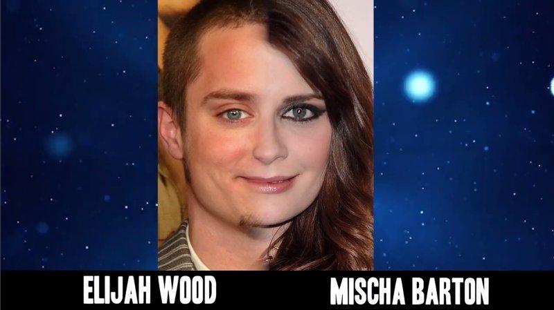 Celebrities Faces Look Alikes 5 Mischa Barton Elijah Wood Mix