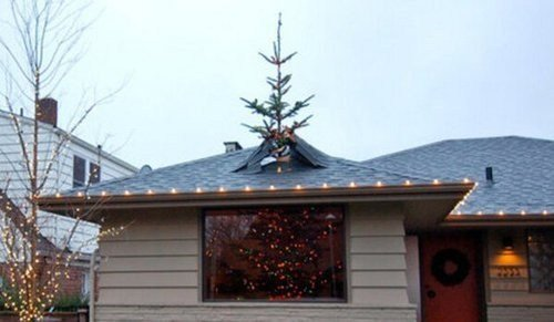 Funny Christmas Trees 1 Through the Roof 2