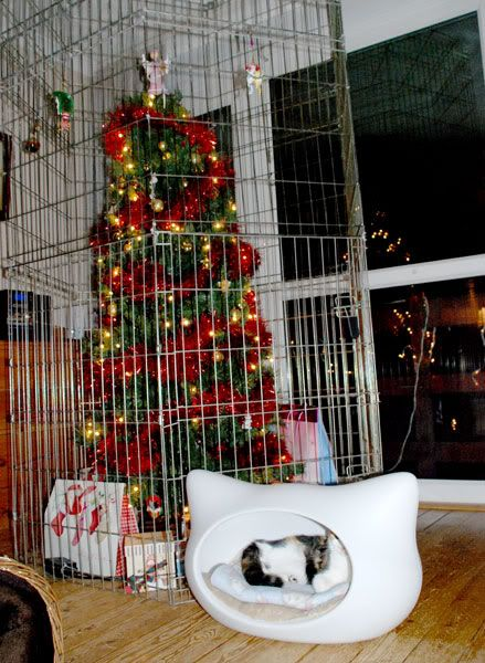 Funny Christmas Trees 11 Cat Proof Tree