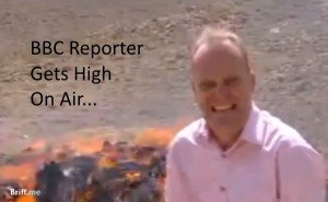 Reporter Gets High