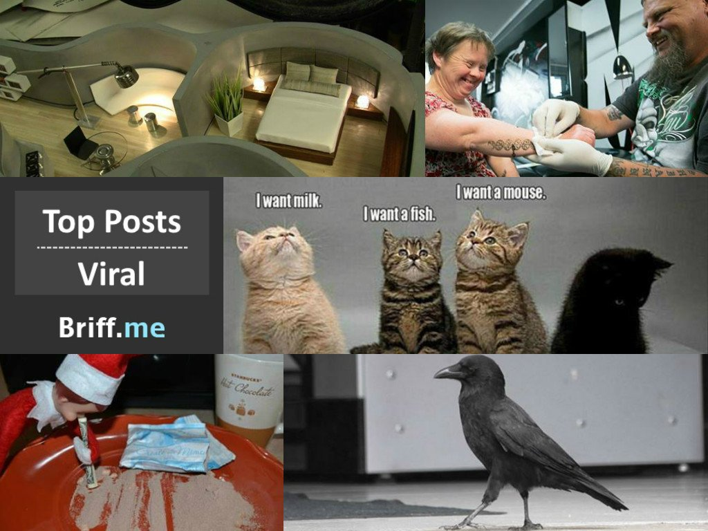 Viral Briff 04Dec2014