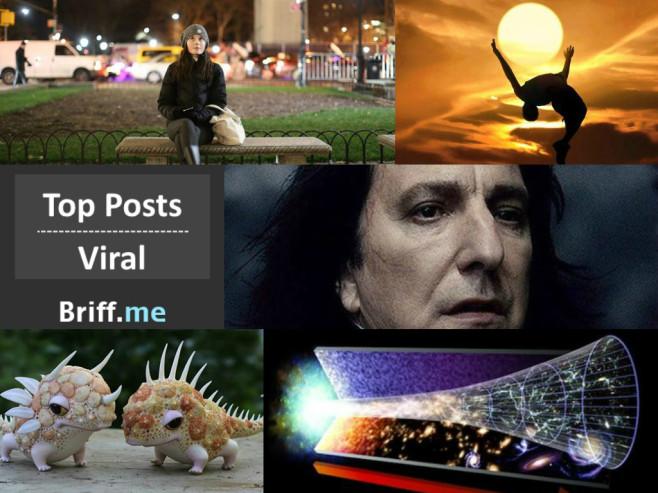 Viral Briff 12Dec2014