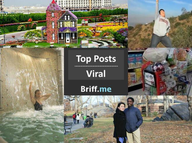 Viral Briff 13Dec2014