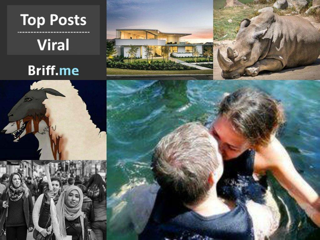 Viral Briff 15Dec2014
