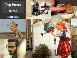 Viral Briff 30Nov2014