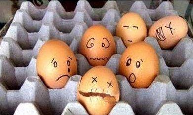 Funny Egg art 12 Ideas