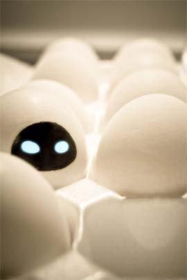 Funny Eggs 12 Wall-e Eve
