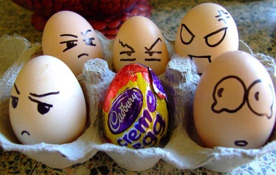 Funny Egg photos 16 strange