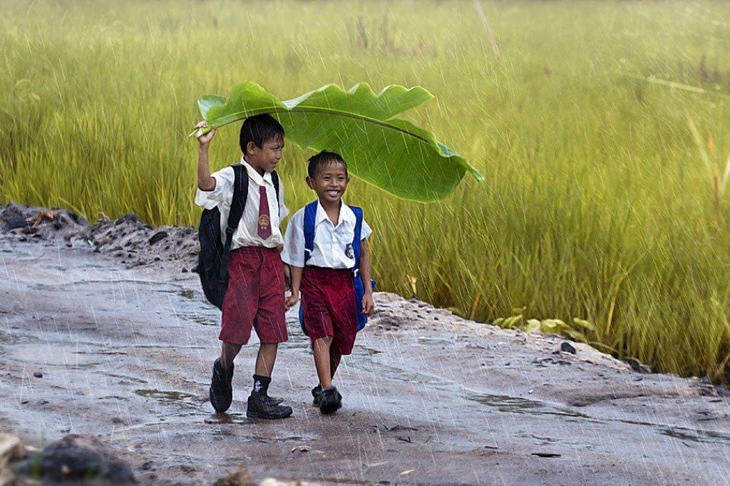 Natural Leaf Umbrella Kids