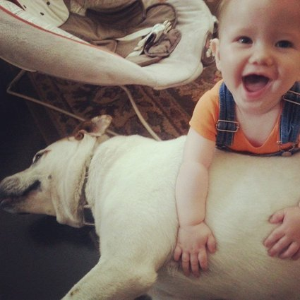 Amazing Baby and Dog