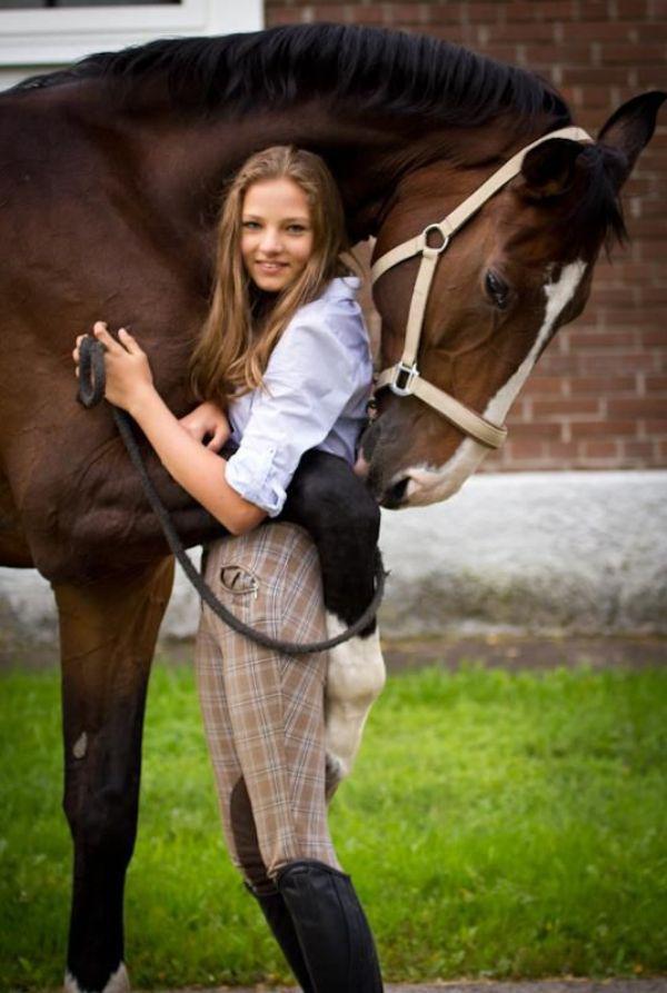 Horse Animal Hug