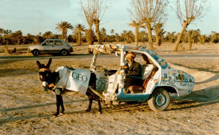 Horse Power Car 11 - Donkey Car