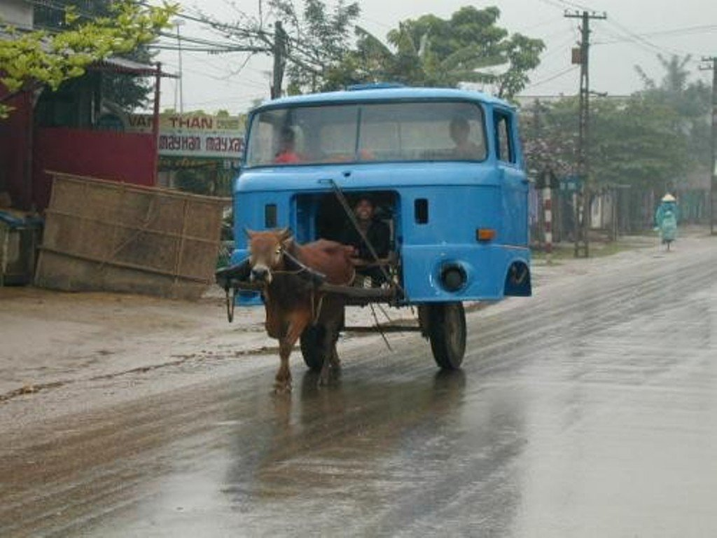Horse Powered Car 15 - Cow Truck