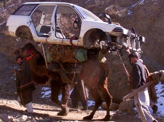 Horse Powered Car 19 - Car on Camel