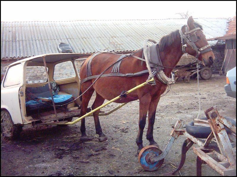 Horse Power Car 7 - Half Car