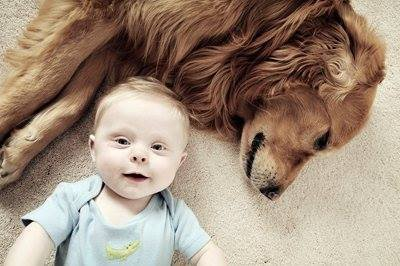 Is it a selfie Dogs and Babies