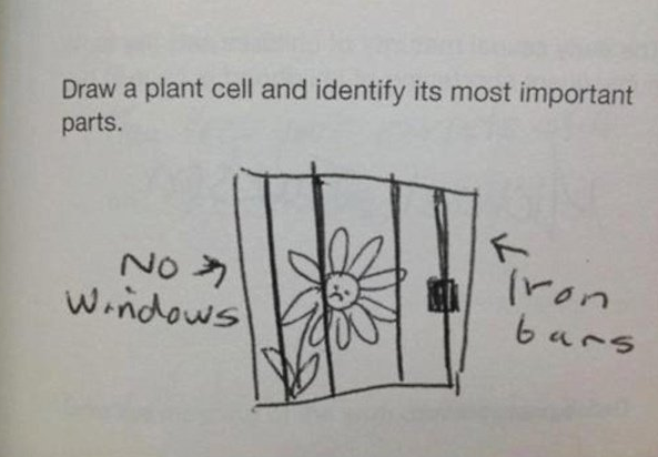 Plant Cell Epic Mistakes