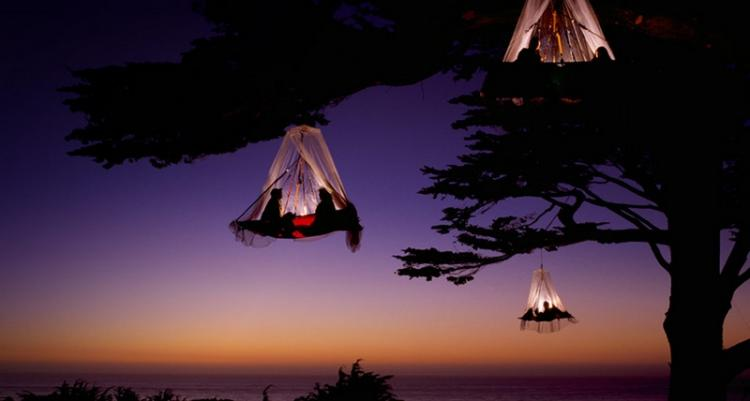 Tree camping in Germany High Place