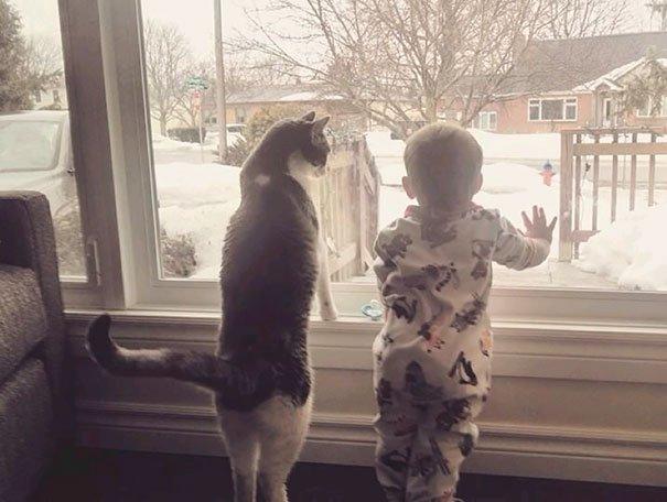 Kids & Cat