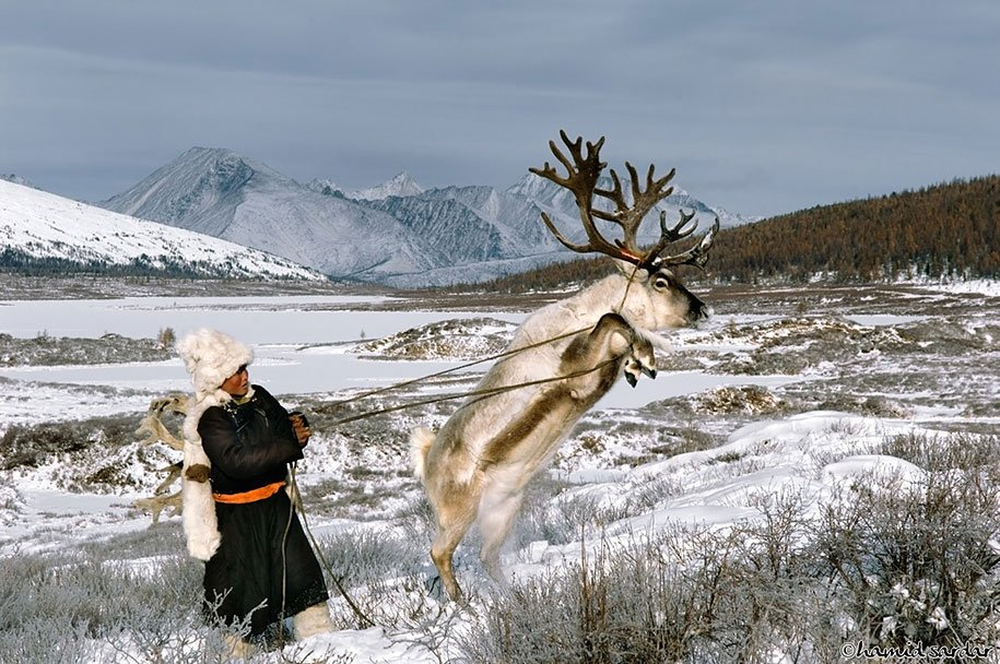 Reindeer Peoples