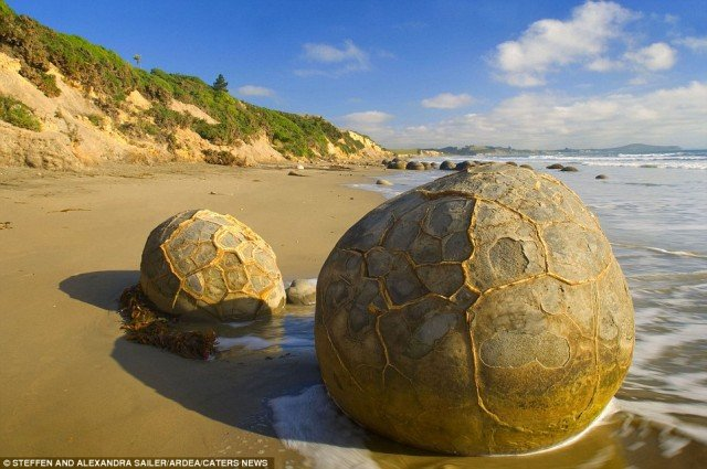 The Moeraki Boulders Travel Ideas