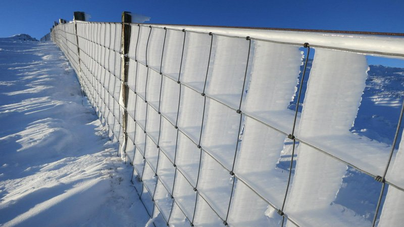 The window of rime ice and wire fence, UK. Great Photos
