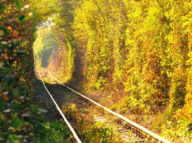 Tunnel of Love in Klevan, Ukraine 2 Unusual Places