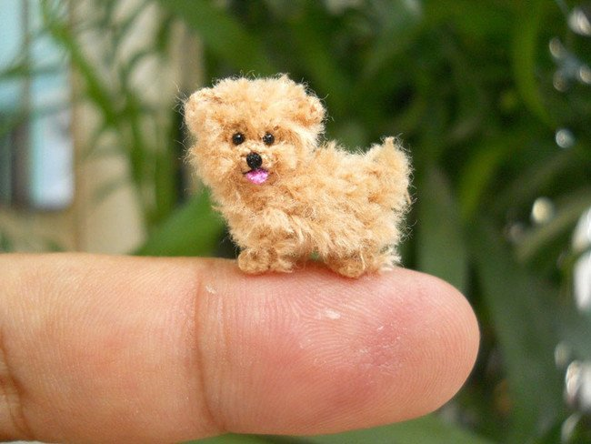 Adorable Dog Tiny Crochets