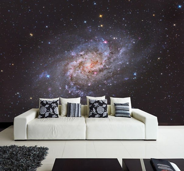 Beautiful Galax Wall Decal