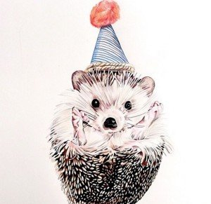 Birthday Art Hedgehog