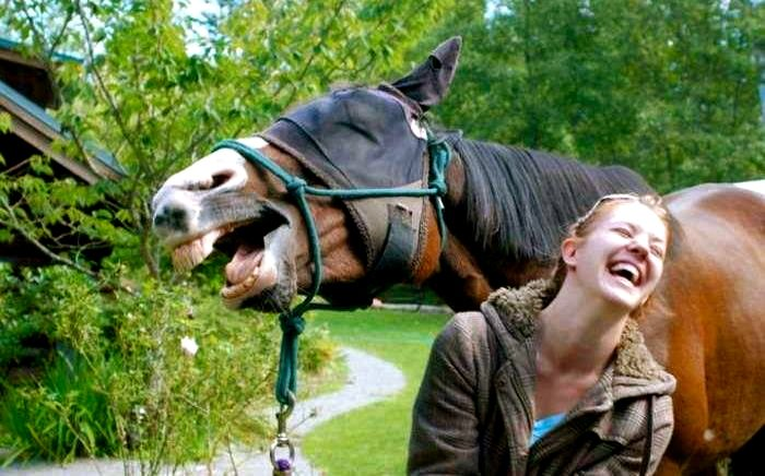 Both laughing Perfectly Timed Photo