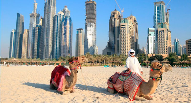 Camel rides on the beach 2 Crazy Dubai