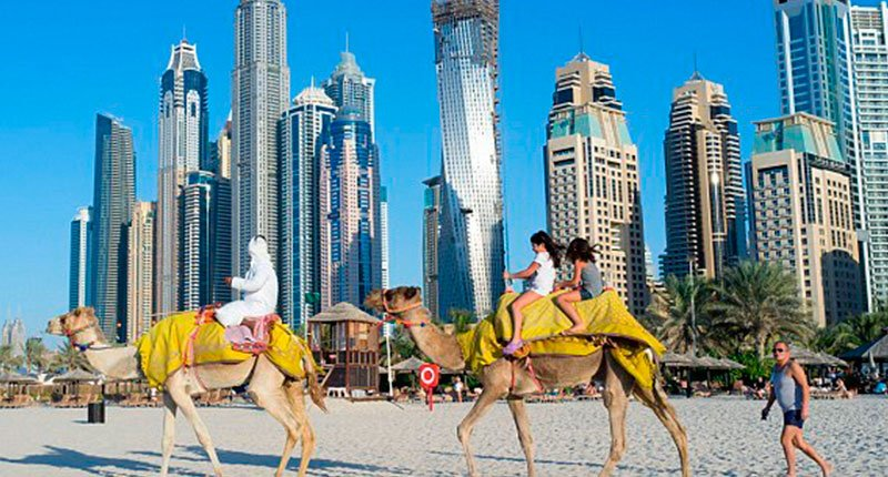 Camel rides on the beach Crazy Dubai