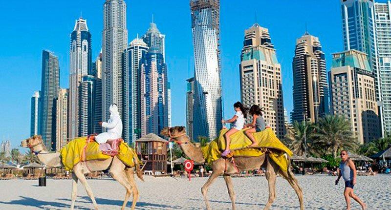 Camel rides on the beach Crazy Dubai