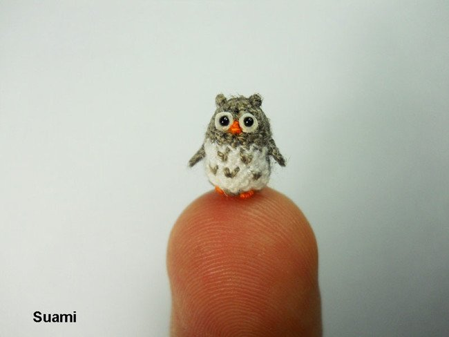 Confused Owl Tiny Crochets