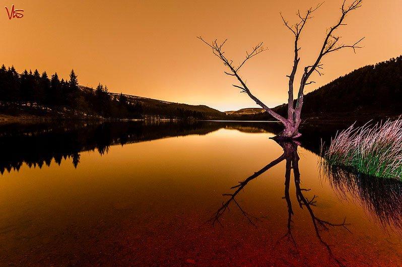 Derwent Valley Water Reflection