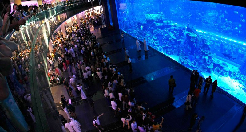 Gigantic aquariums in the shopping malls Crazy Dubai