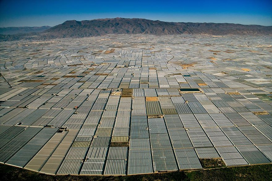 Greenhouses (Almeria - Spain) Overpopulation