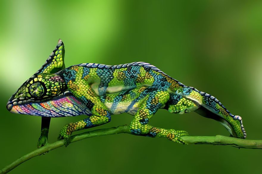 Look how Chameleon turns into two woman Body Painting