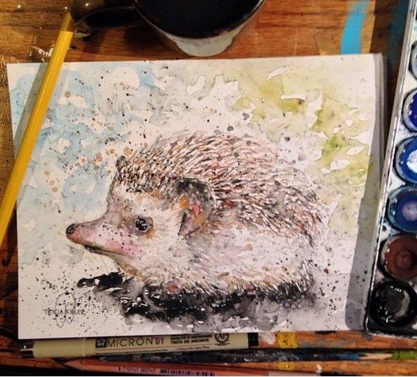 Magnificent artwork Hedgehog
