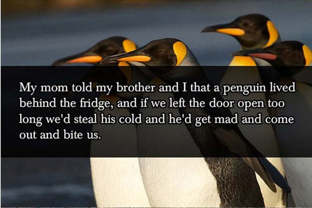 Penguin lie behind fridges Parent Lies